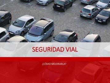 Leopoldo Lares - Seguridad vial