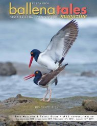 South Pacific Costa Rica Travel Guide and Magazine #63