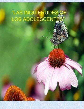 LAS INQUIERUDES DE LOS ADOLESCENTES