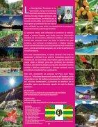 Revista completa-reducido - Page 4