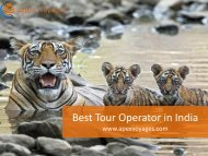 Best Tour Operator in India - Apex Voyages