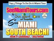 Top 5 Things To Do On A Miami Tour