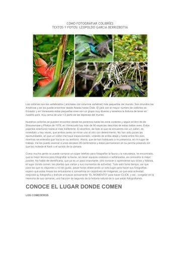 COMO FOTOGRAFIAR COLIBRÍES YUMPU 1