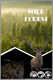 Flyer Forest (20-10-18)