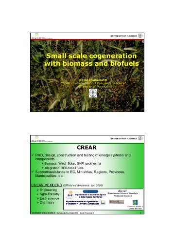 Small scale cogeneration with biomass and biofuels - Bioenergy World