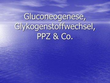 Gluconeogenese, Glykogenstoffwechsel, PPZ & Co.