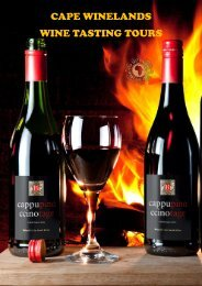 Western Cape Wine Tours Travel Guide