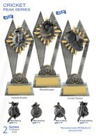 Summer Trophies for Distinction 2019 - Page 2