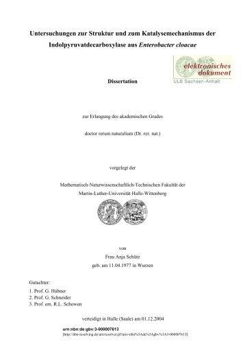 Untersuchungen zur Struktur und zum Katalysemechanismus der ...