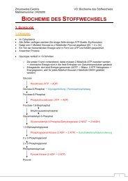 Mitschrift 3 - StV Biologie Salzburg