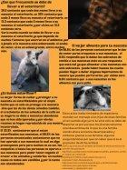 Proyecto de Lenguaje - Page 3