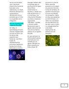 EL DIARIO DE LA NATURALEZA - Page 7