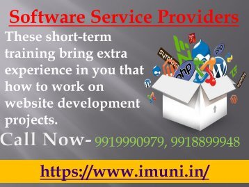 Make a solid career in Software Service Providers field and become a pro
