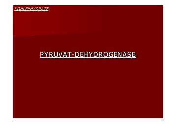 PYRUVAT-DEHYDROGENASE - Biochemie Trainingscamp