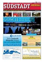 Südstadt Journal 08/2011 - LeineVision.
