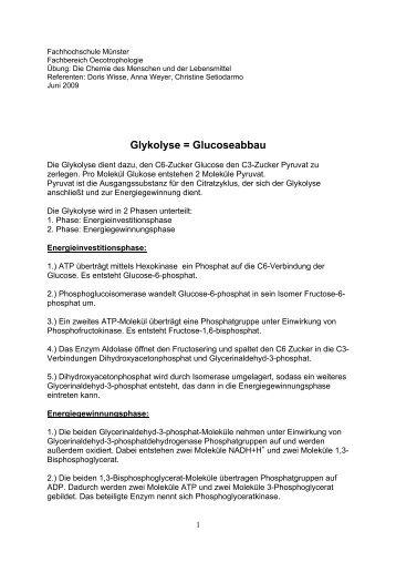 Glykolyse = Glucoseabbau