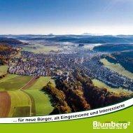 Blumberg-E-Paper