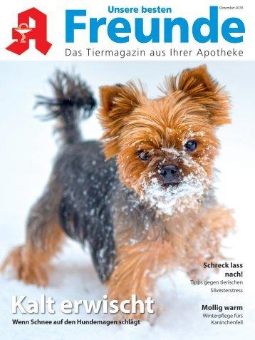 "Leseprobe ""Unsere besten Freunde"" Dezember 2018"
