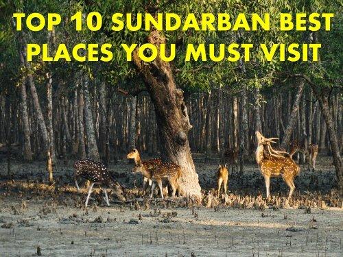 Sundarban Best Places You Must Visit