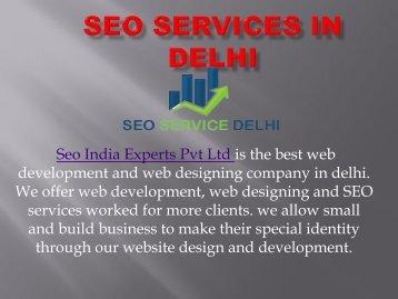 SEO Services in Delhi