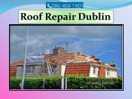 Roof Restoration in Dublin