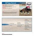ARHA Stallion Aktion 2019 Katalog - Seite 3