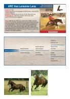 ARHA Stallion Aktion 2019 Katalog - Seite 4