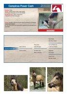 ARHA Stallion Aktion 2019 Katalog - Seite 6