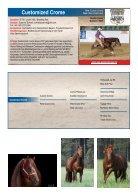 ARHA Stallion Aktion 2019 Katalog - Seite 7