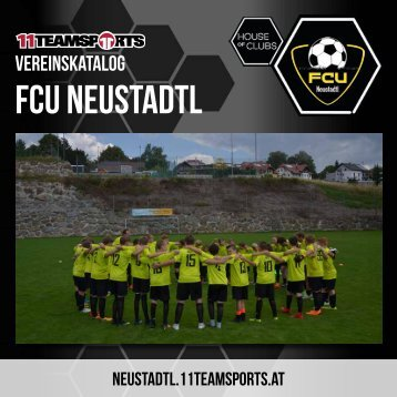 Online Neustadtl