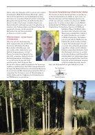 Radius Baustoff Holz 2018 - Page 5