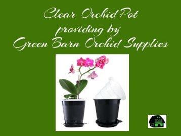 Find Clear Orchid Pot - Greenbarnorchid.com