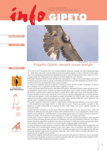 infoGIPETO n.28 | dicembre 2011