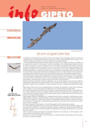 infoGIPETO n.25 | dicembre 2008