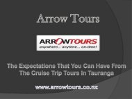 The Expectations That You Can Have From The Cruise Trip Tours In Tauranga