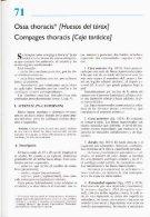 Latarjet & Ruiz Liard - Anatomia Humana Tomo II - Page 4