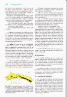 Latarjet & Ruiz Liard - Anatomia Humana Tomo II - Page 7
