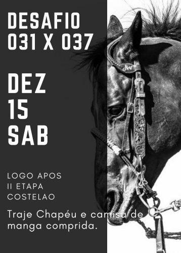 DESAFIO 031X037