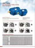 AEEF-series-electric-motor - Page 2