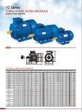 Y2-series-EFFICIENCY-LEVEL-electric-motor - Page 2
