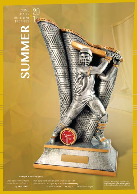 2019 Some Really Different Summer Trophies