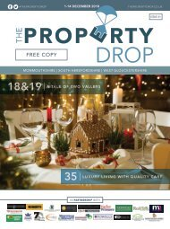 Property Drop Issue 41