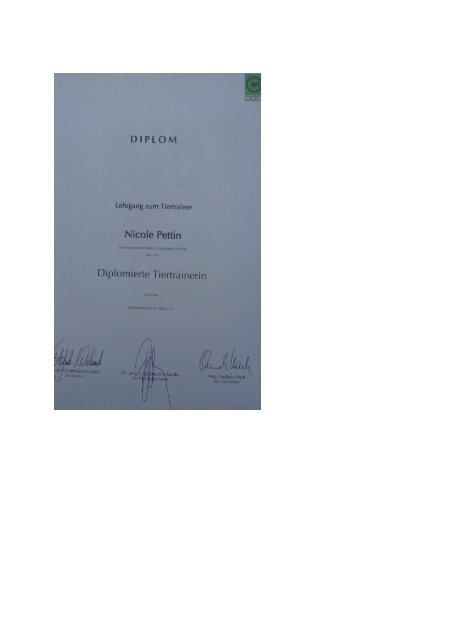 DiplomTiertraining