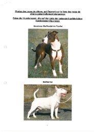 Photos des races de chiens, qui figurent sur la liste des races de ...