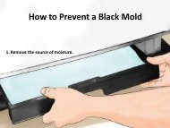 How to Prevent a Black Mold