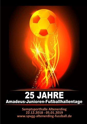 Turnierheft für die 25. Amadeus-Hallentagen