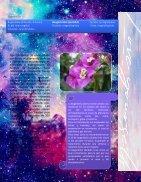 ana lourdes revista flora y fauna - Page 7