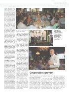 Jornal Cocamar Outubro 2016 - Page 7
