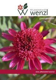 katalog_wenzl