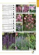 katalog_wenzl - Page 5